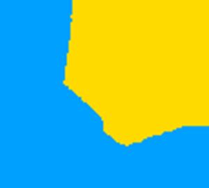 Лого, двадцять років